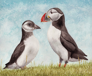 Atlantic Puffin and Chick SOLD