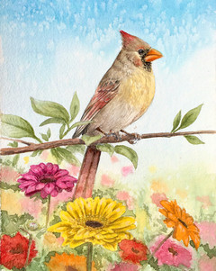 Female Northern Cardinal SOLD