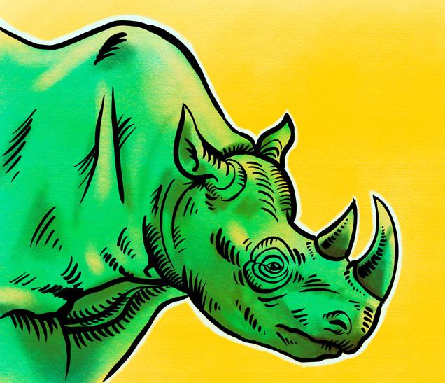 Joseph Grice Rhino Digital Illustration