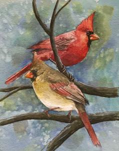 Northern Cardinals SOLD