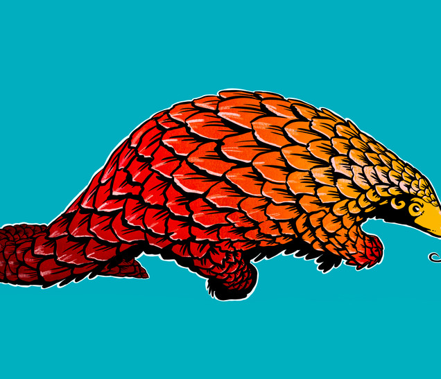 Joseph Grice Pengolin Digital Illustration