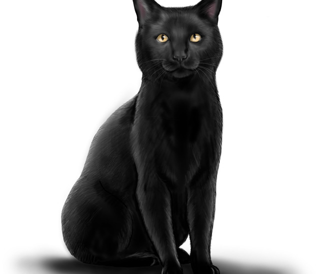 Joseph Grice Cat Digital Illustration
