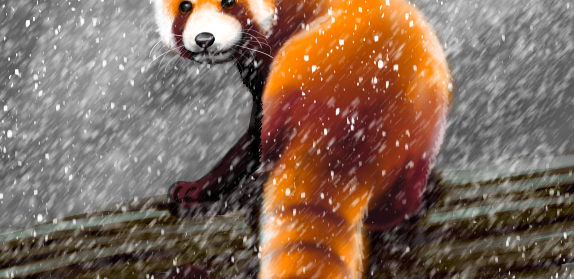 Joseph Grice Red Panda Digital Illustration