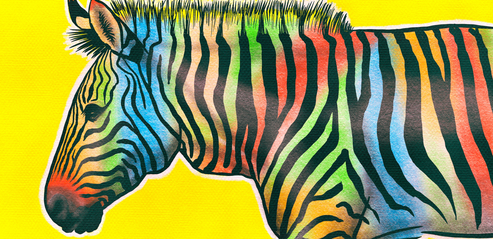 Joseph Grice Rainbow Zebra Digital Illustration