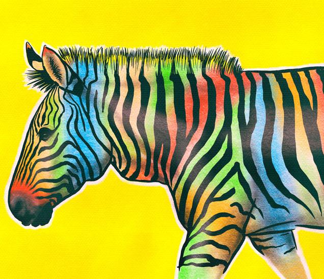Joseph Grice Rainbow Zebra Digital Illustration