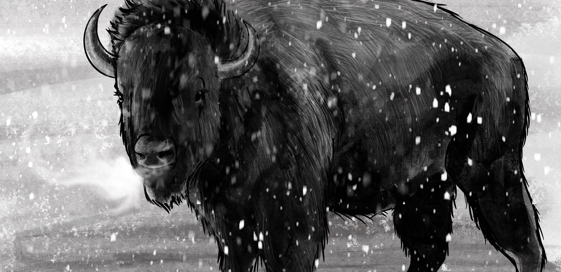 Joseph Grice Buffalo Digital Illustration