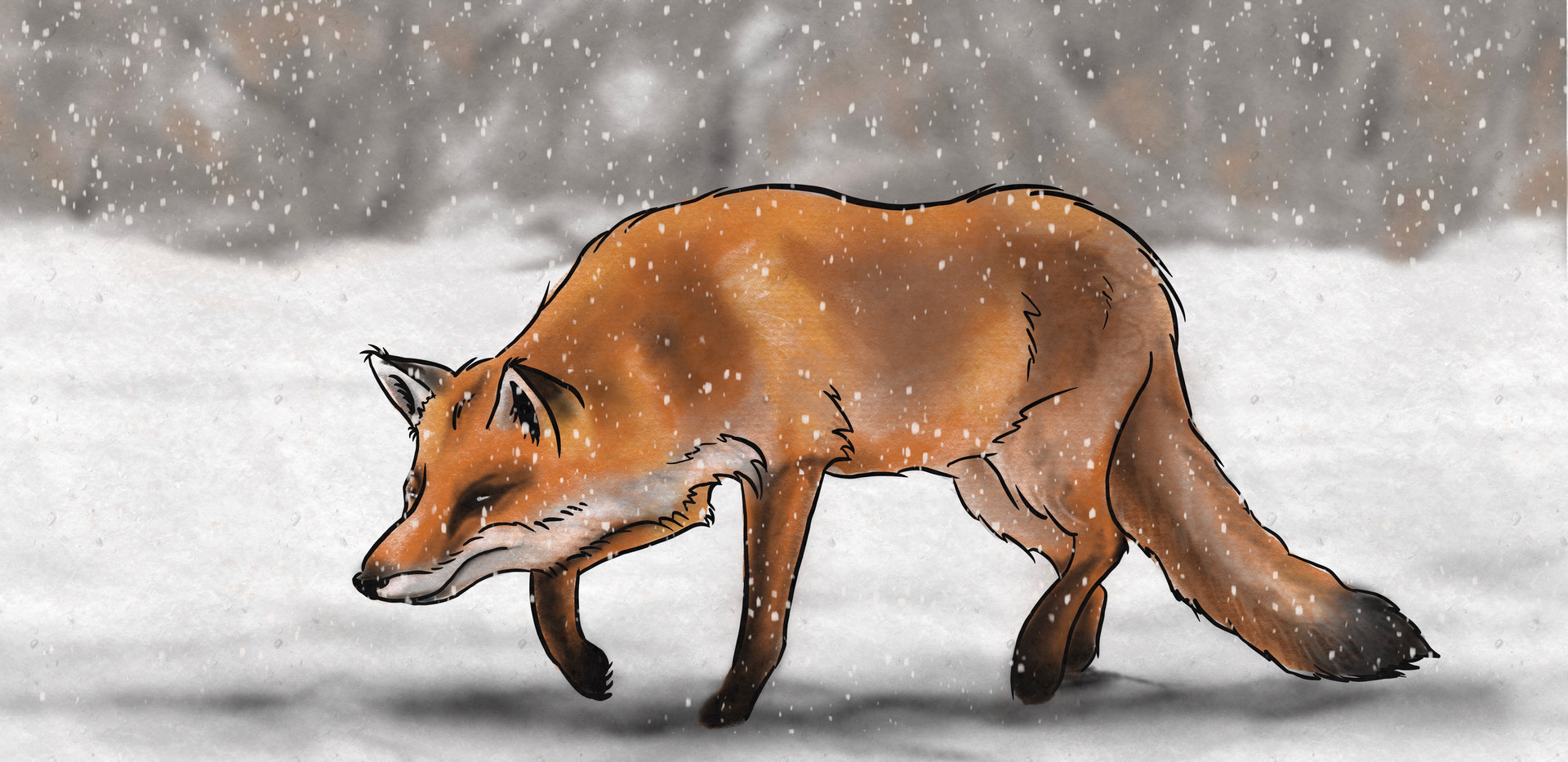 Joseph Grice Red Fox Digital Illustration