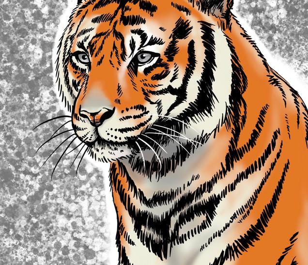 Joseph Grice Tiger Digital Illustration