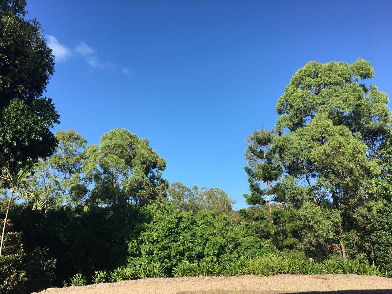 Enjoying Nature in Noosa
