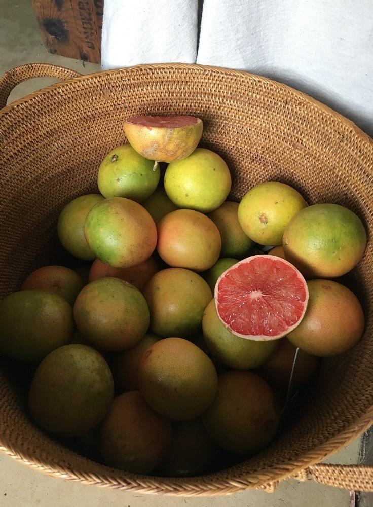 Serafini Mind Spa citrus