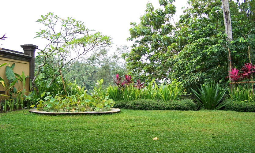 Serafini Mind Spa garden