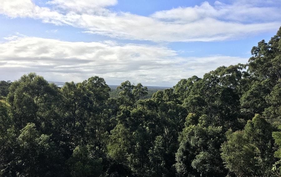 Beautiful Noosa Sanctuary