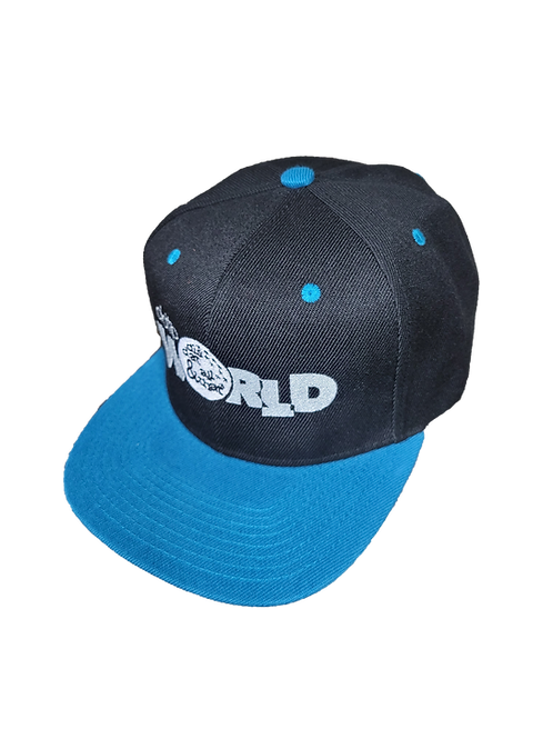 DDTP World Snapback Hat - Grey Logo on Black with Aquamarine Brim