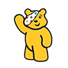charity-causes_children-in-need-pudsey.p