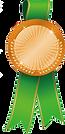 bronze medal.png