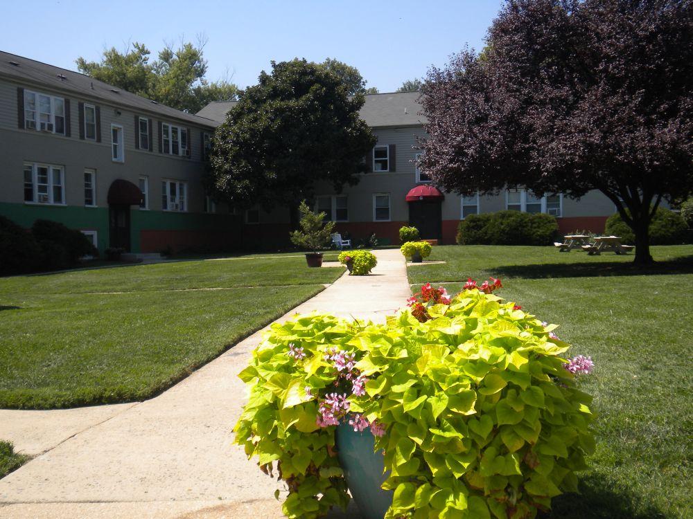 Ivy Courtyard