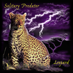 Simulated Seps - Leopard