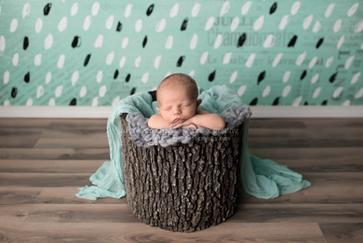 Tree stump bucket