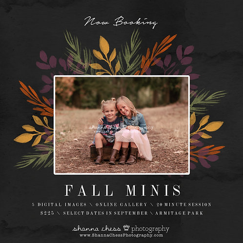 Fall Mini Session, September 3rd, 6:45pm