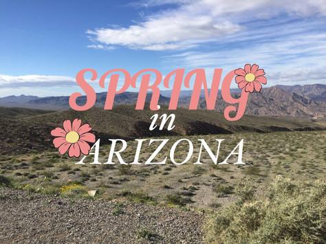 FNPL: Spring In Arizona