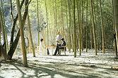 nagiso_outdoorlunch01.jpg