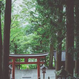 日枝神社鳥居.jpg