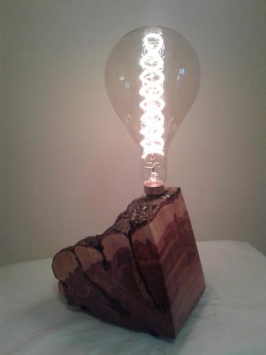 Chestnut Lamp  -It's Courtney's  :)
