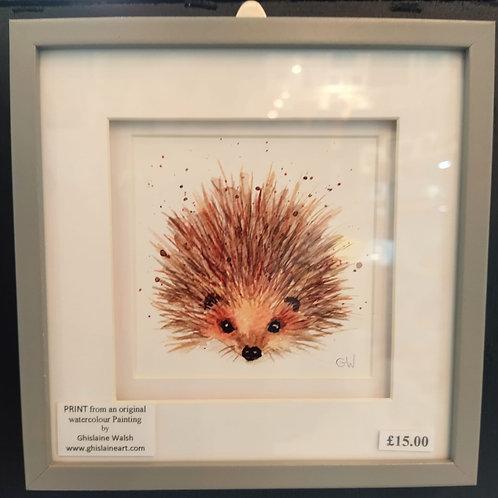 Hedgehog Watercolour print