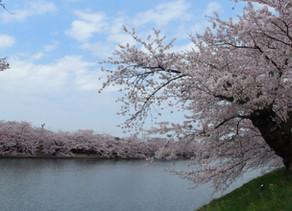 Características del clima en Japón y eventos destacados