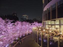 Midtown/Tokyo