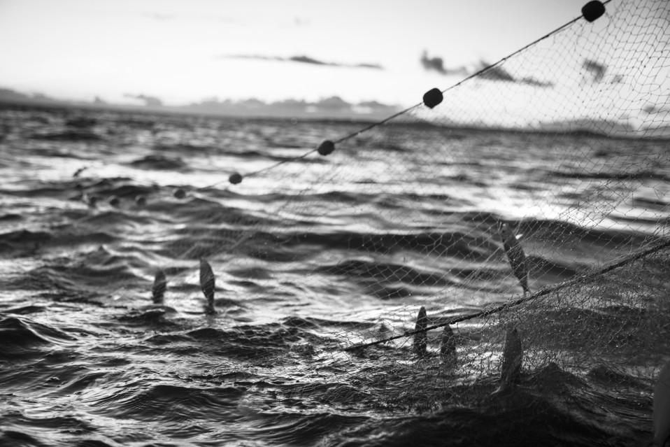 pescadores008.jpg