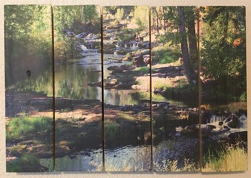 0001- Trout Lake Creek