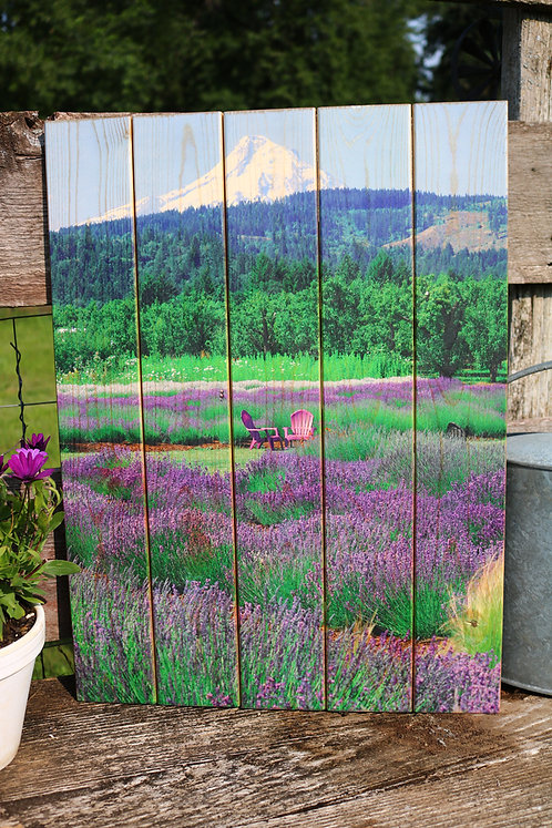 0085- Hood River Lavender Farm with Purple Chairs