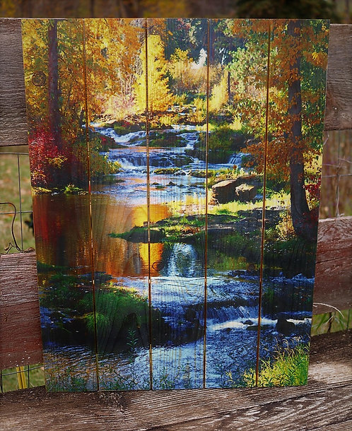 0046- Trout Lake Creek in the Fall