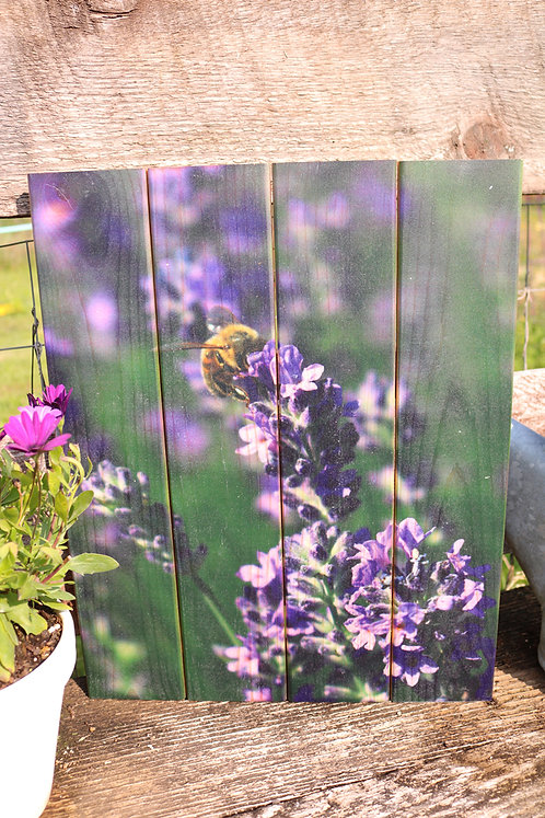 0088- Bee on Lavender