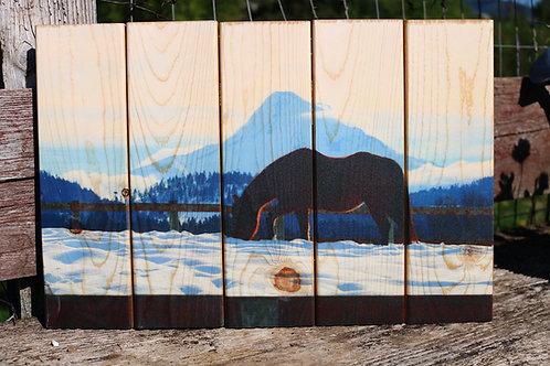 0099- Mare silhouette & Mt Hood
