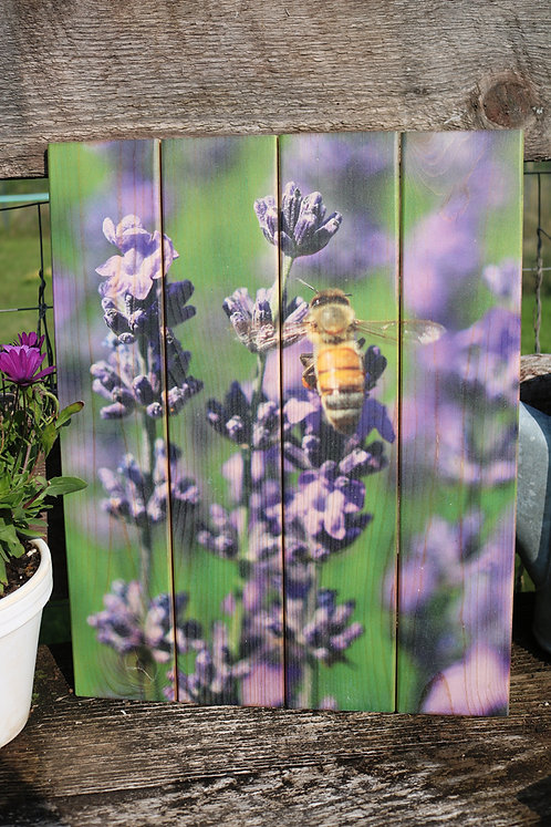 0089- Bee on Lavender