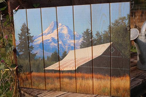 0048- Old Barn & Mt Hood