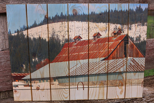 0072- Barn in Trout Lake- Wood, Metal, Brick