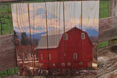 0075- Red Barn & Mt Hood