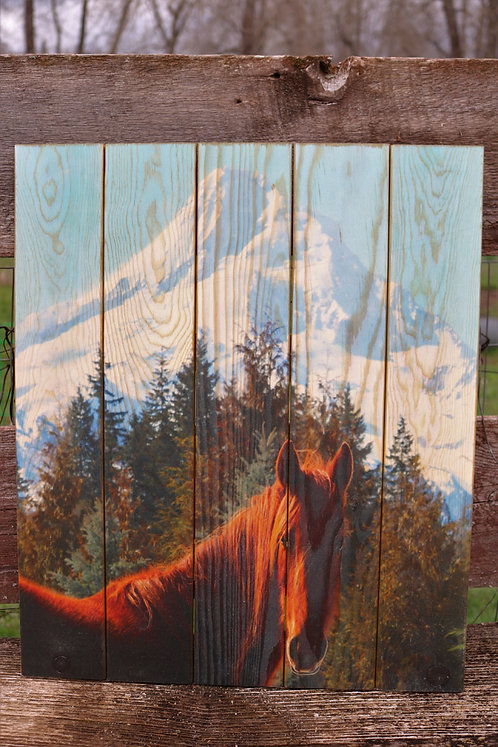 0065- Mare and Mt Hood