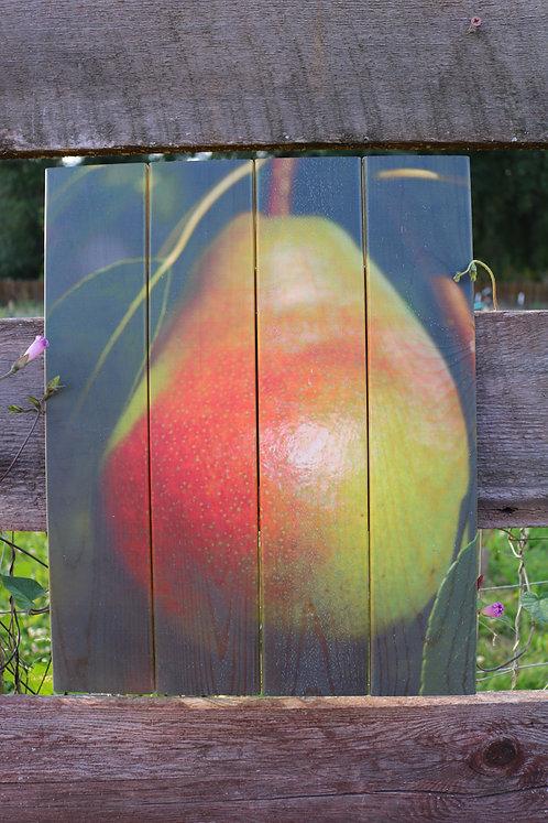 0060- Blushing Pear