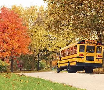 School Bus.webp