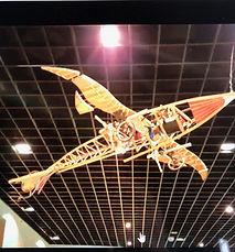 Plane model.jpg