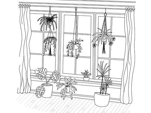 Macrame Plant Hanger Kit & Instructional Video