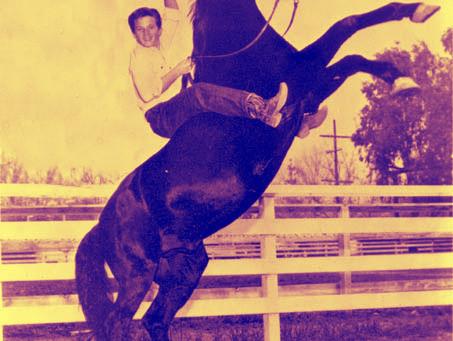 Fit for Fury - Fitness für Pferdefreunde