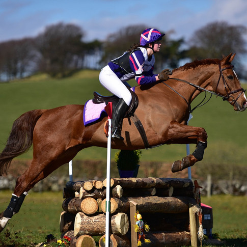 Die Nadeltherapie ist optimal für die regelmässige Gesundheits-Vorsorge. Für aktive, gesunde Pferde mit schönen Bewegungen.