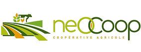 neocoop.jpg