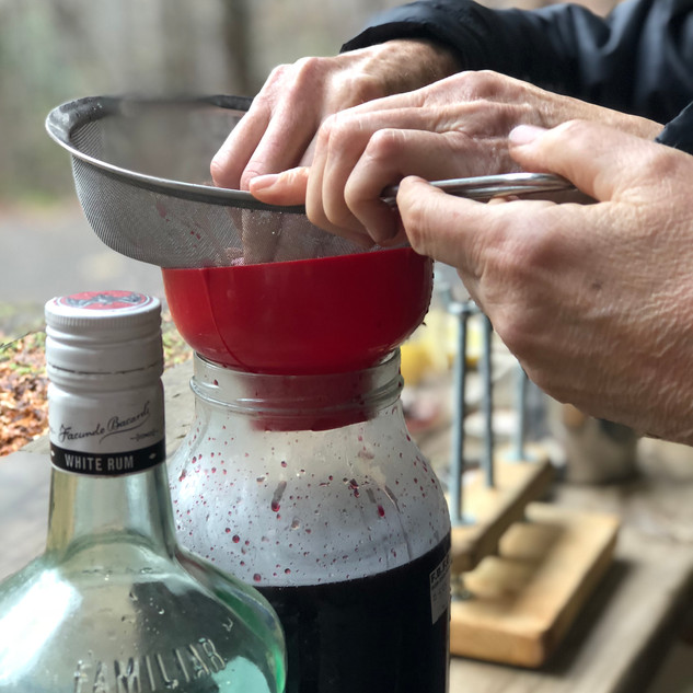 Squeezing out the Elderberry Juice