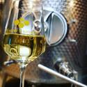 Glass of Wildflower Honey Wine